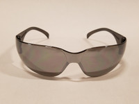 Big Dog Motorcycles Riding Glasses - Mirror Tinted (Large)