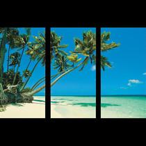 https://d3d71ba2asa5oz.cloudfront.net/12001231/images/tropical-beach-backdrop.jpg