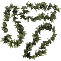 http://www.1superparty.com/content/product_images/12-tropical-fern-leaf-leis.jpg