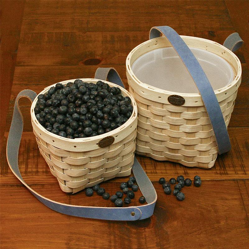 berry-picking-natural-06740.jpg