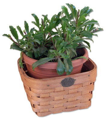 Peterboro Countertop Planter Basket with Protector