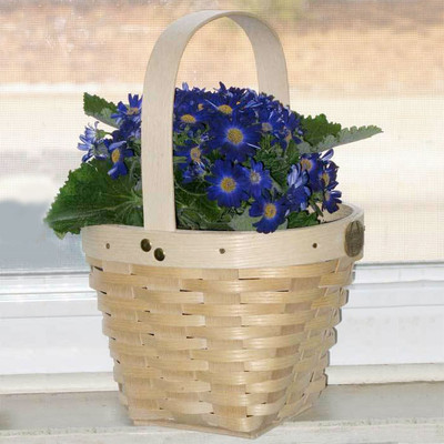 Peterboro May Day Basket