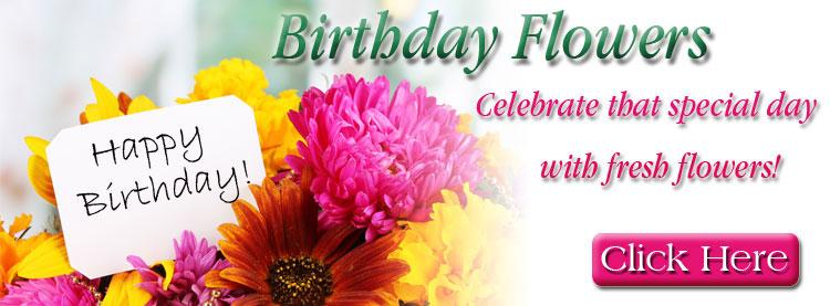 birthday-domori-nongv.jpg