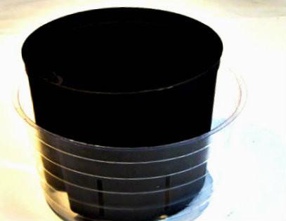 "7"" saucer with 6"" culture pot"