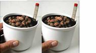 "3"" Hydroponic Planter - Buy 2 Pkg - Save $1.00"
