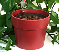 "5"" Hydro Planter - Classic Style Outer Pot"