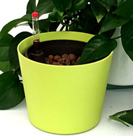 "5"" Hydro Planter - Flori Style Outer Pot"