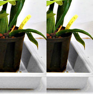 "Grower Trays 22""x 11"" (white) for indoors - Buy 2 - Save $3.00"