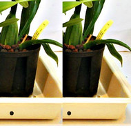 "Grower Trays 22""x 11"" (tan) for outdoors - Buy 2 - Save $3.00"