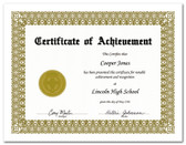 Shown is certificate border, style 1, in gold ink on white paper (Cool School Studios 02200).
