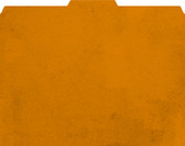Image shows Rustic Orange File-'N Style Folder with 1/3 tab.