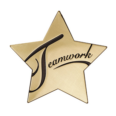 "Shown is the ""Teamwork"" Star Series Medallion (Cool School Studios SS078M)."