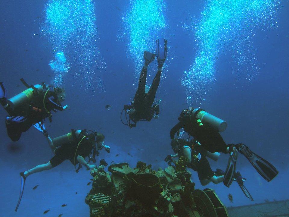 brac-diving.jpg