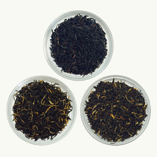 Black Tea Sample Collection