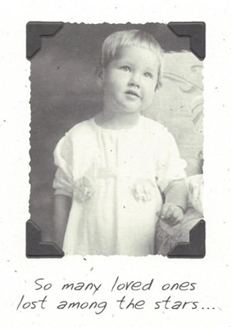DSM 1910