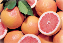 Dos Rios Red Grapefruit, Organic, 17 Lb. Box
