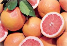 Dos Rios Red Grapefruit, Organic, 17 Lb. Box