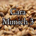 Cara Munich 3