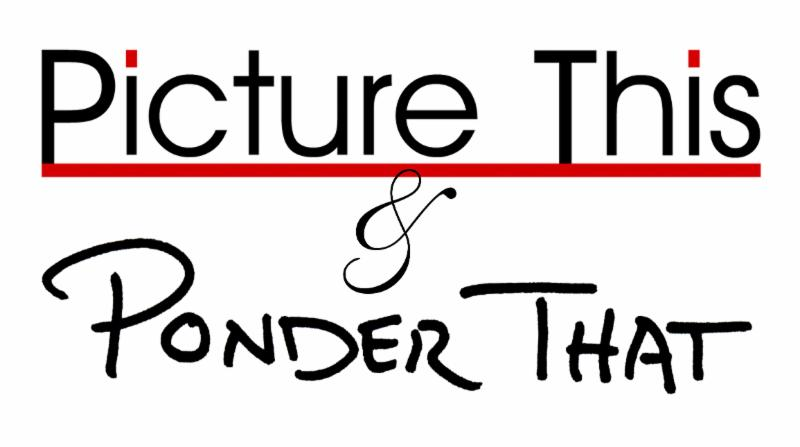 picture-this-ponder-that-logo.jpg