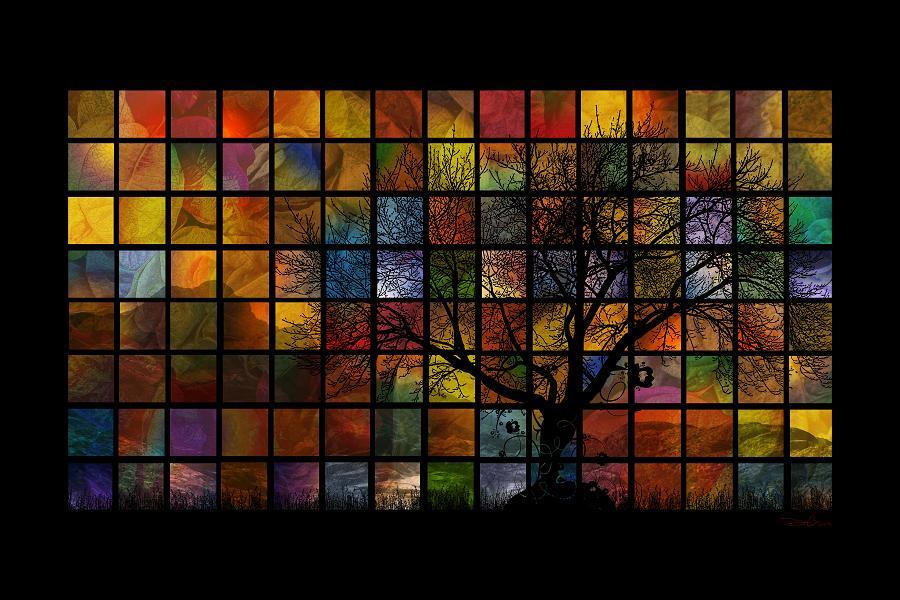 tree-squared-35x20.jpg