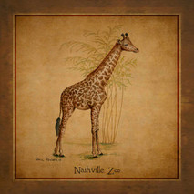 Wood Nashville Zoo - Giraffe