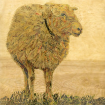 "Randy Purcell ""Sheep"" on wood"
