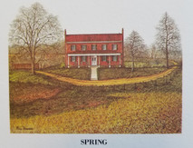 MS-Spring LE