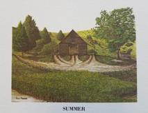 MS-Summer LE