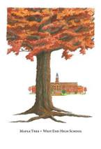 Tree Trunks - West End High School