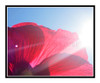 Light Ray on a Red Hollyhock Flower Against a Blue Sky 2658
