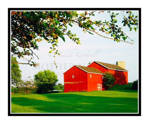 Red Poor House Barn in Hillsdale, Michigan 128