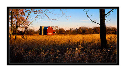 Red Barn in Hillsdale, Michigan 533