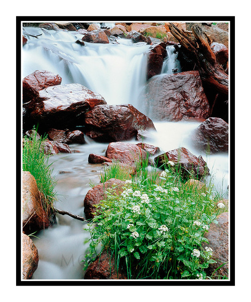 Waterfall Run-off from St. Mary's Glacier, Colorado 164