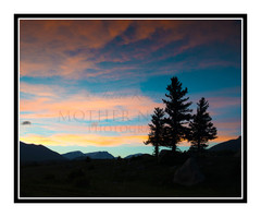 Sunset in Mt. Moraine Park in Rocky Mountain National Park, Colorado 2198