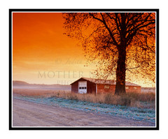 Red Farm Shed on a Frosty Winter Road in Hillsdale, Michigan 595