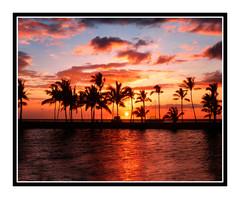 "Anaehoomalu Bay ""A Bay"" Fishing Pond on the Big island, Hawaii 187"