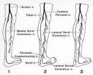 Leg Numbness During Meditation