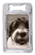 Open Dog Bone Frame 4 x 6