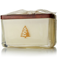 Frasier Fir Seasonal 2-wick poured rectangular candle (3942)