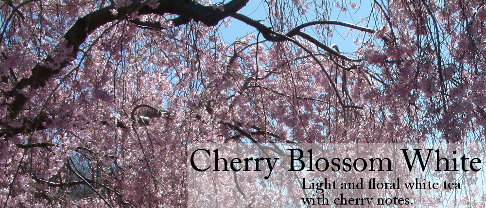 Cherry Blossom White Tea - Light and Floral