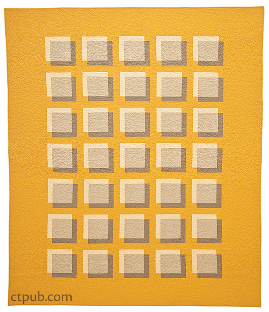 Quilt project from Transparency Quilts