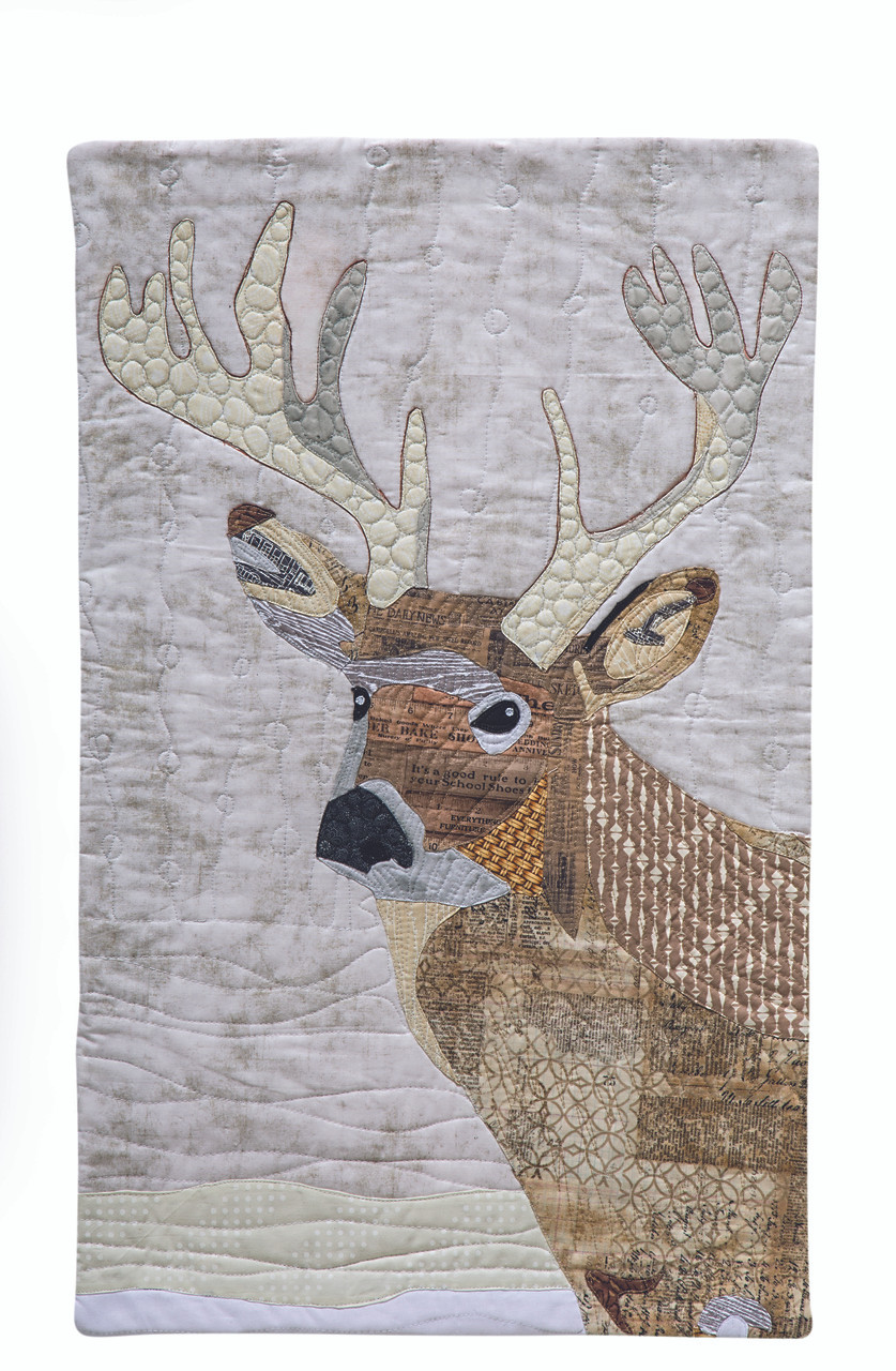 Paint-by-Number Quilts - C&T Publishing