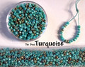 Seed Mix - Turquoise