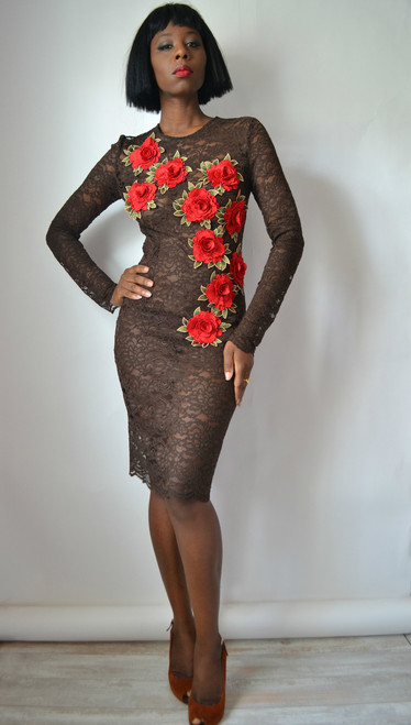 Rose Embroidered Lace Sheath Dress (front)