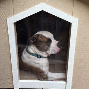 X-Large Basic Dog House With A/C