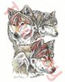 Three Wolves (8x10)