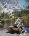 Coupe by Lake by Scafa (16x20)