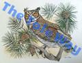 Owl (12x16)