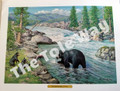 Black Bear with Cubs (12x16)