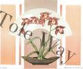 Oriental Orchids (8x10)